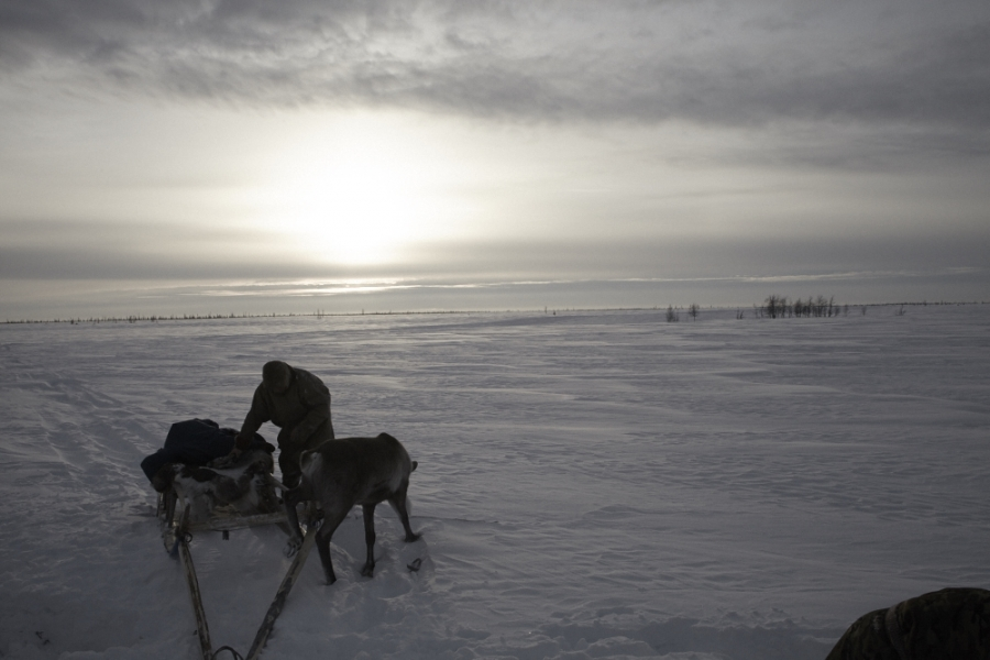 Yamal, the edge of the world