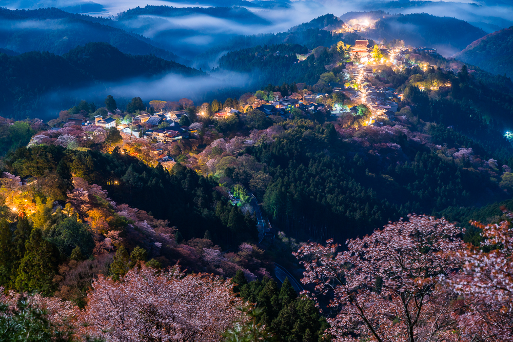 Japanese Nightscapes