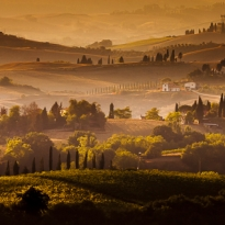 Tuscan Dreams