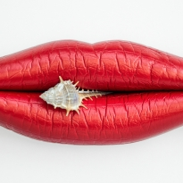 Surreal lips
