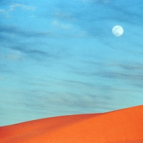 Moon in the desert
