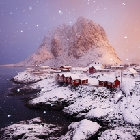 Snowy morning at the Lofoten
