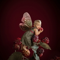 The Berry Fairy