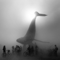 The Space Whale - Burning Man