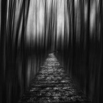 Path through darkness