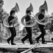 Three Tubas Traversing The Track