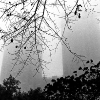 Foggy Day New York, The Majestic