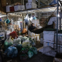 Fruit and vegetable wholesale market in the middle of the night