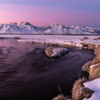 winter morning, Eastern Sierra