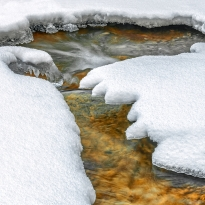 The quiet whisper of the winter stream