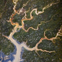 An abstract aerial view of Tralee bay wetlands